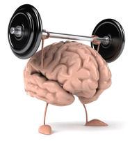 muscle_brain200