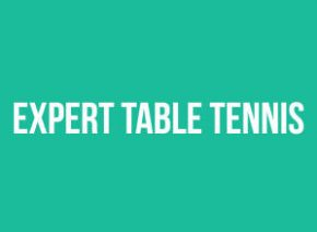 expert table tennis